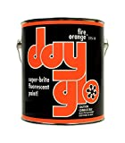 DayGlo Fluorescent Solvent-Based 215 Series Brushing Enamel Paint (Quart, Fire...
