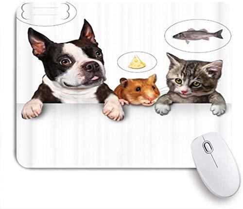 Dekoratives Gaming-Mauspad,Katze Fisch Hund Knochen Maus essen Brot lustiges Tier,Bürocomputer-Mausmatte mit rutschfester Gummibasis