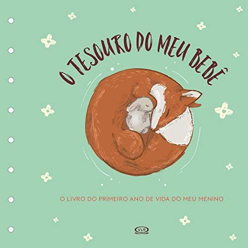 Tesouro do meu Bebê: O Livro de Recordações