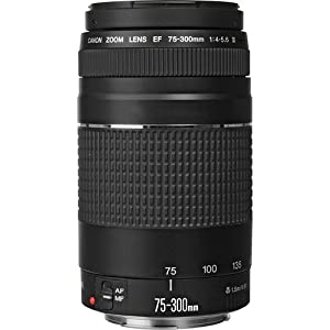 Canon EF 75-300mm f/4-5.6 III Telephoto Zoom Lens for T3, T3i, T4i, T5, T5i, T6i, T6s, SL1, 5D, 5Ds, 6D, 60D, 7D, 70D, 600D, 650D, 700D, 100D, 1100D, 1200D + I3ePro Basic Accessory Bundle