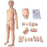 WLKQ Training Manikin Life Size, Multi-Functional Patient Care Simulator Male and Female Nursing Manikin Human Anatomical Model, for Nursing Medical Training