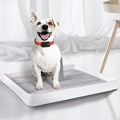 Tipo abierto inodoro orinal suministros para mascotas perro PingGongHuaKeJiYouXianGongSi