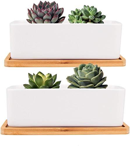 Danolt - Vaso per piante in ceramica bianca, 2 vasi rettangolari in ceramica con vassoio in bambù, con foro di drenaggio, per interni ed esterni, 17,8 x 8,9 x 5,6 cm