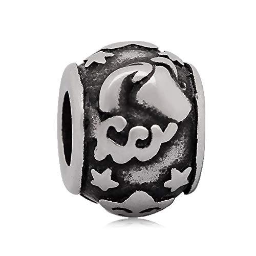 Andante-Stones zilveren kraal charm sterrenbeeld waterman element bal voor European Beads + organza zakje