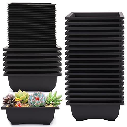 Yesland 24 Pcs Bonsai Training Pots of 6-1/2 Inch - Classic Deep Humidity Trays with Built in Mesh - Plastic Square Pot for Plants, Flowers, Herbs, African Violets & Seed Nursery