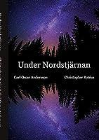 Under Nordstjaernan