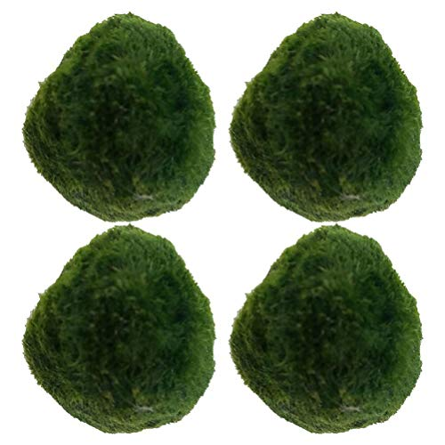 Boules De Mousse Pour Aquarium, Boule dAlgues Vertes 4pcs, Plante Artificielle dOrnement De Mauvaises Herbes dEau Pour La Décoration dAquarium De Réservoir De Poissons