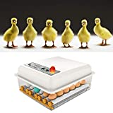 KKTECT Incubadora de Huevos de 16 Huevos Máquina nacedora Huevo Giratorio automático de Temperatura Ajustable para...