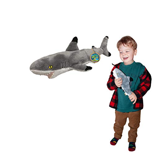 Juguete Suave del tiburón de EcoBuddiez Blacktip, pequeño (los 32cm) - Juguete Suave y mimoso de la Felpa de Deluxebase. Hecho de Las Botellas plásticas recicladas. Regalo mimoso niñ