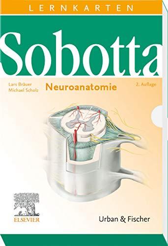 Sobotta Lernkarten Neuroanatomie
