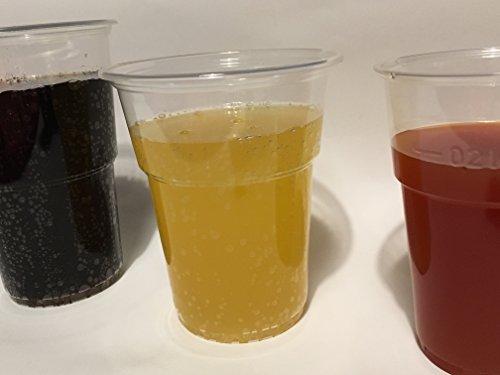 Ol-Gastro-Bedarf 1000 Trinkbecher PP Ausschankbecher Plastikbecher transparent 0,3Liter300ml Becher mit Schaumrand