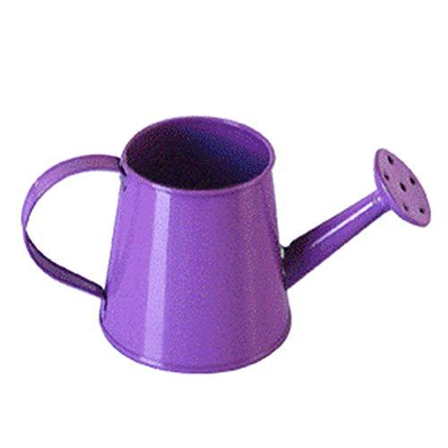 WCY Can de riego del Metal en Forma de Mini Favor Tiesto Caramelo Creativo del Partido de la Caja del plantador del jardín Suculentas Deocration yqaae (Color : Purple)