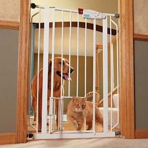 Extra Tall Walk Thru Gate with Pet Door Gate Expands 29 quot 40 quot Wide x 41 quot Tall Pet door is 7 W x 10 H -  CARLSON PET PRODUCTS,INC., 0941PW