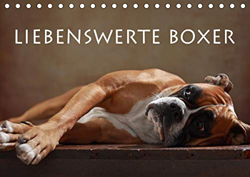 Liebenswerte Boxer (Tischkalender 2021 DIN A5 quer)