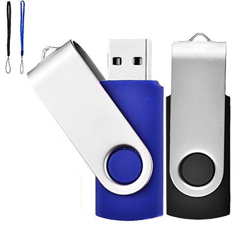 Lot de 2 Clé USB 8 Go USB 2.0 Mémoire Flash Drive Clef USB Pivotantes avec Cordes Bon Cadeau pour Enfant Parents et Amis (8G, Noir/Bleu)