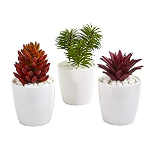 Silk Flower Arrangements Nearly Natural Mixed Succulent Artificial White Vase (Set of 3) Silk Plants Red/Green