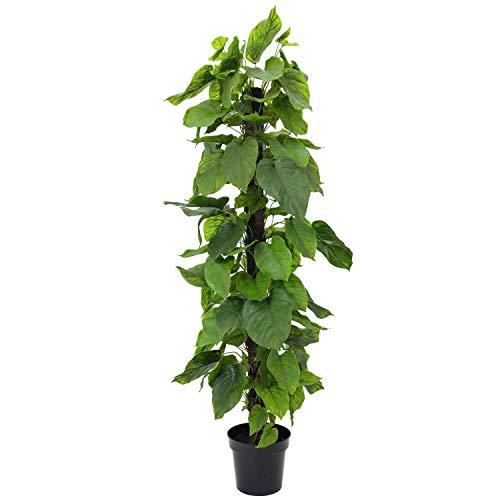 Pothos con Tronco de Fibra de Palmera, en Maceta, 180 cm - Planta Artificial/árbol sintético - artplants