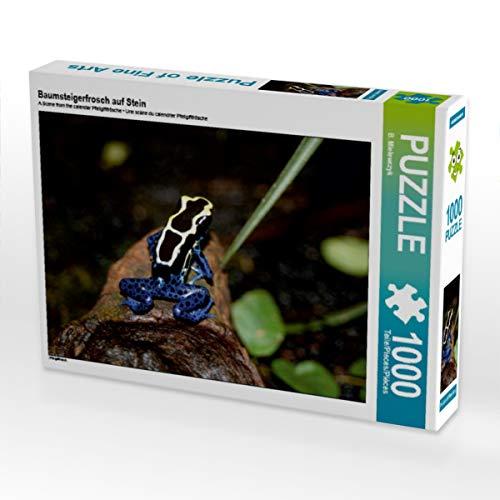 CALVENDO Puzzle Baumsteigerfrosch auf Stein 1000 Teile Lege-Größe 64 x 48 cm Foto-Puzzle Bild von Barbara Mielewczyk