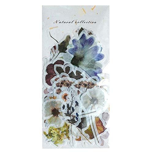 Toruiwa Selbstklebend Sticker Scrapbooking Aufkleber Retro Pflanzen Aufkleber für DIY Tagebuch Album Label Scrapbooking Karten Dekoration Geschenk