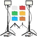 【2021進化版】FOSITAN 撮影用ライト 5600K 調光可能 USB 2パック カラーフィルター 撮影照明ライト ビデオライト 照明キット 多機能ライトスタンド 照明 撮影 LEDライト 生放送 YouTubeビデオ撮影 スタジオライト 写真撮影照明対応 初心者向け 日本語説明書