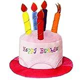 Novelty Place Pink Plush Happy Birthday Cake Hat - Unisex Adult Size Fancy Dress Party Hats -...