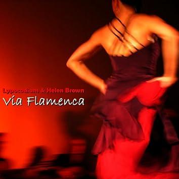 Via Flamenca