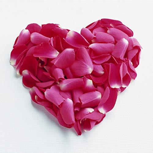 Adultos Rompecabezas 500 Piezas Corazón De Pétalos De Rosa Juguete De Regalo Ideal La Mejor Decoración Para El Hogar De Bricolaje 87x57cm