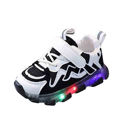 Baby Kinderschuhe LED Mädchen Jungen Sneaker LED Bunte leichte Blinkschuhe Licht Leuchtend Sportschuhe Mesh Sneakers mit Klettverschluss, 1-6 Jahre (Schwarz, 26)