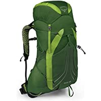 Osprey Men's Exos 38 Ultralight Backpack (Small, Tunnel Green)