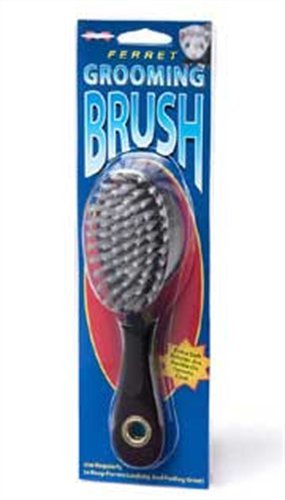Marshall Ferret Grooming Brush