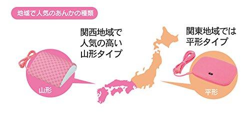 広電(KODEN)『山型電気あんか(VAY-60Y-5)』