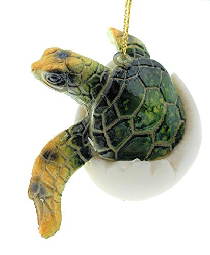 Globe Imports Green Baby Sea Turtle Hatching from Egg Christmas Ornament, 3.5 Inches Wide