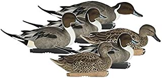 Avery Hunting Gear PG Ffd Elite Pintails (1/2 Dozen)