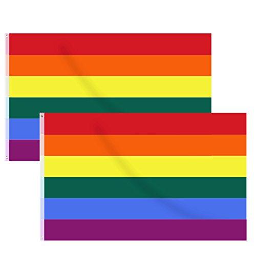 Hysagtek 2pcs Bandera del Arco Iris Orgullo Gay Bandera LGBT Pride Parade Banners Banderas, 5x 3ft/150x 90cm