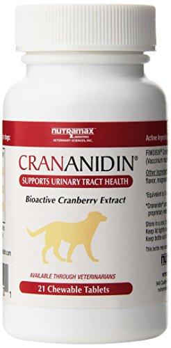 Nutramax Laboratories Crananidin Pet Supplement