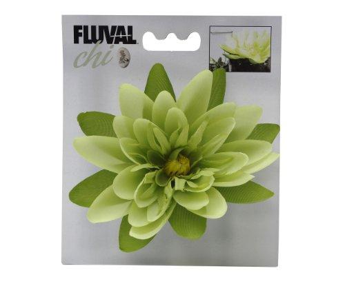 Fluval Chi Buchsbaum Und Hohes Gras Aquarium Ornament