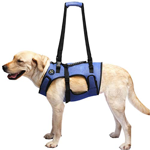 COODEO Dog Lift Harness, Support & Recovery Sling, Pet Rehabilitation Lifts Vest Adjustable Breathable Straps for Old, Disabled, Joint Injuries, Arthritis, Paralysis Dogs Walk (Large)