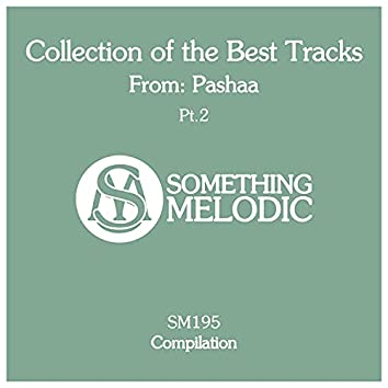 Collection of the Best Tracks From: Pashaa, Pt. 2