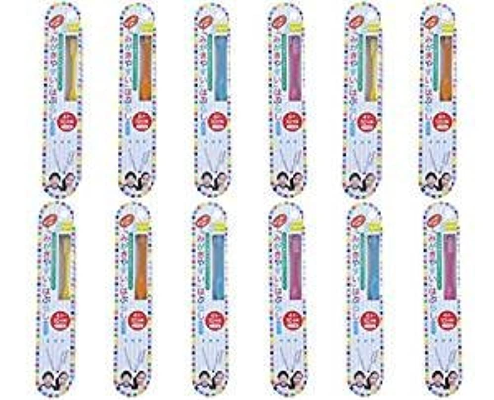 切手大学院段階歯ブラシ職人田辺重吉 磨きやすい歯ブラシこども用 LT-10 (12本組)