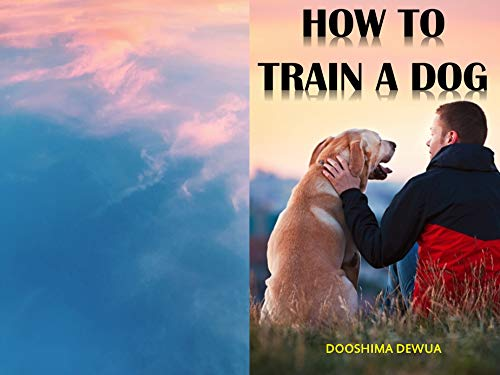 DOG TRAINING ESSENTIALS: The Complete A-Z Guide of Dog Training (English Edition)