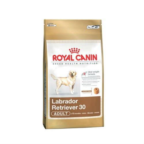 Royal Canin Labrador Retriever - Comida para perros (3 kg)