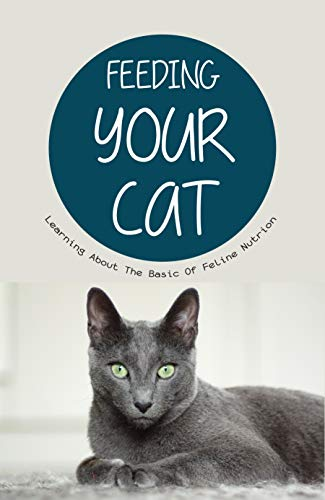 Feeding Your Cat- Learning About The Basic Of Feline...