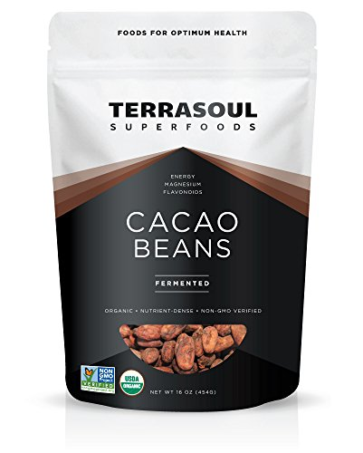 Terrasoul Superfoods Raw Organic Criollo Cacao Beans, 1 Pound