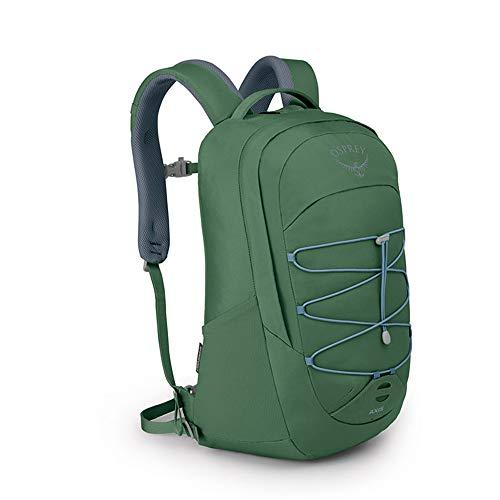 Osprey Axis 18 Rucksack für Lifestyle, Unisex - Tortuga Green O/S