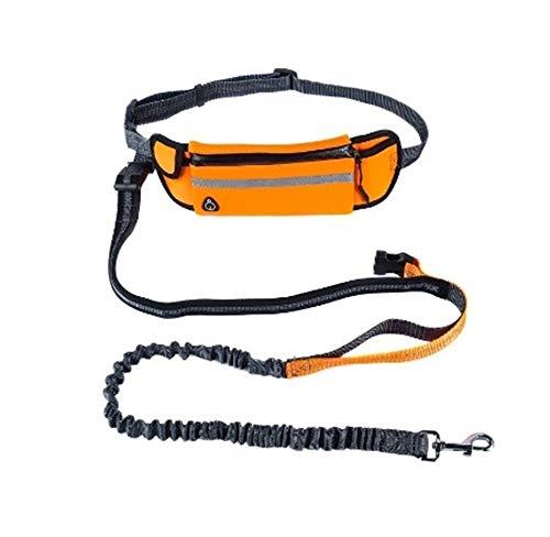 Sicherheitsgeschirre YSJ Hands Free Hundelaufleine mit Taillen-Taschen verstellbare Gürtel stoßabsorbierendes Bungee Passend bis zu 45inch Taille orange