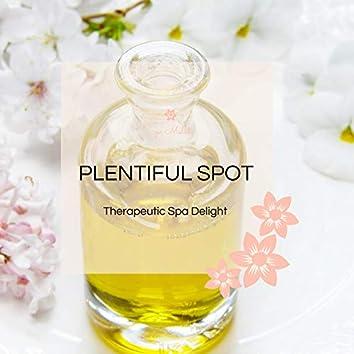 Plentiful Spot - Therapeutic Spa Delight