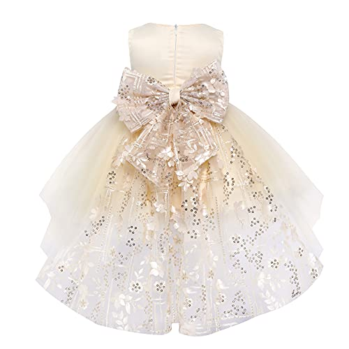 FYMNSI Vestido de niña pequeña o bebé para fiesta de cumpleaños o...