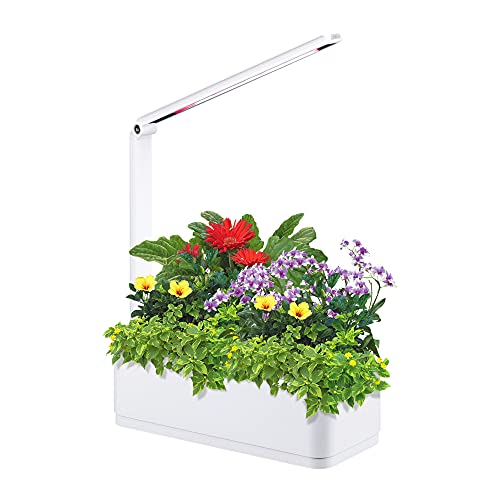 Scottish Boy Intelligent Hydroponic Garden Indoor Herb Garden Kit With Grow Light Hydroponics Growing System Starter Kit,Can Adjust The Mode As Table Light.