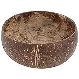 JWDS Cuenco de coco con concha de coco y diseño de coco, cuenco práctico para ensalada de frutas y frutos secos