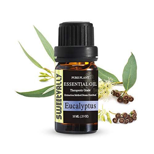 Aromatherapy Essential Oil for Diffuser, Pure Essential Oil - 10ml (Eucalyptus)